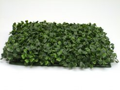 Buxus Boxwood Box Mats 30x30cm Pack of 12 pieces