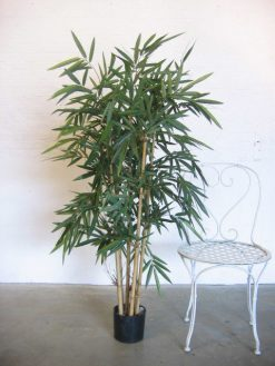 Duo Pack Bamboo Tree 140cm high??with Green Leaves