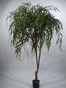 Duo Pack Weeping Willow Tree 190cm Green Leaves