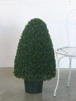 Boxwood Tea Leaf Cone 80cm