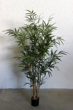 Duo Pack Bamboo Tree 140cm high each Two Tone Green Leaves