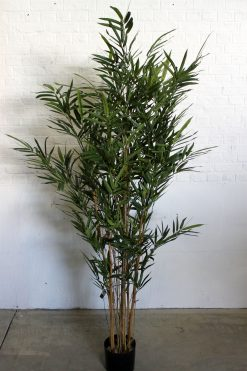 Duo Pack Bamboo Tree 190cm high each Two Tone Green Leaves