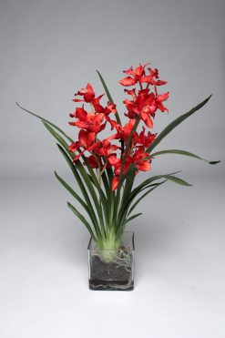 Orchid Cymbidium Red Large with Twigs/Water effect 75cm high