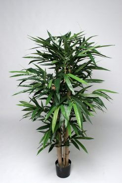 Duo Pack Bamboo Tree 150cm high each