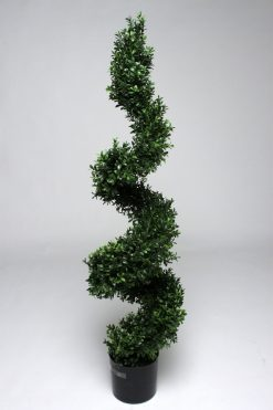 Duo Set Box Tree Spiral Topiary Plant 120cm High 1008 Leaves