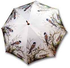 Umbrella Branch and Bird