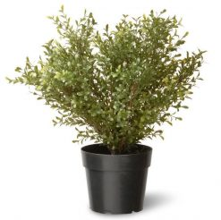 Argentea Topiary Artificial Plant - 24""