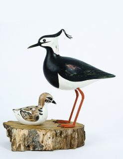 D368 Archipelago Lapwing Mother Chick Block | Avant Garden