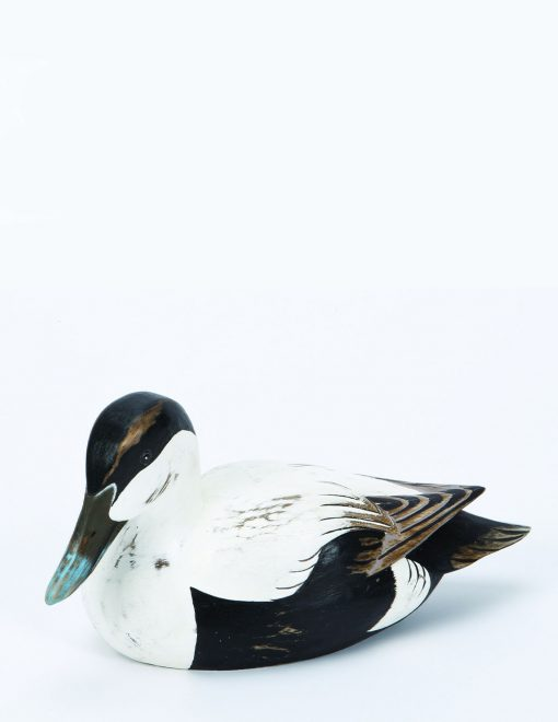 D373 Archipelago Eider Duck Male 27cm Long Wooden Bird Sculpture 1 | Avant Garden
