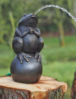 FO 22 Fine Cast Bronze Bull Frog Fountain Water Feature | Avant Garden