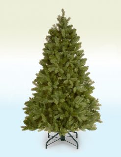 Rhine Spruce Pine Artificial Christmas Tree - 5.5ft