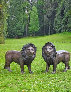WI 9 Solid Bronze Lion Sculptures 100cm 1 | Avant Garden
