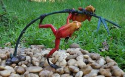 Fine Cast Bronze Sculpture Frog Rainforest Red on Twig