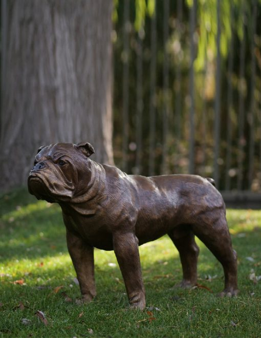 DO 16 Bronze Sculpture English Bulldog 50x27x70cm | Avant Garden