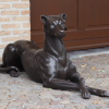 DO 19 Solid Bronze Guard Dog Left 1 | Avant Garden