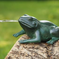 Bronze Sculpture Frog Fountain Head High