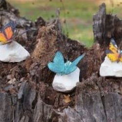 Fine Sculptures Butterfly coloured on rock cast Bronze